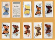 Tobacco cards cigarette cards Butterflies 1932 set